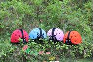 Picture of Mũ bảo hiểm cho trẻ em MumGuard