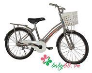 Picture of Xe đạp 20inch Inox